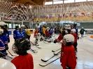 Swiss Ice Hockey Day 2019_3